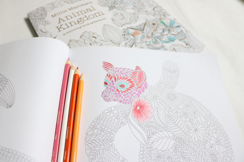 Adult Colouring Books, Millie Marotta, colouringbooks.org.uk