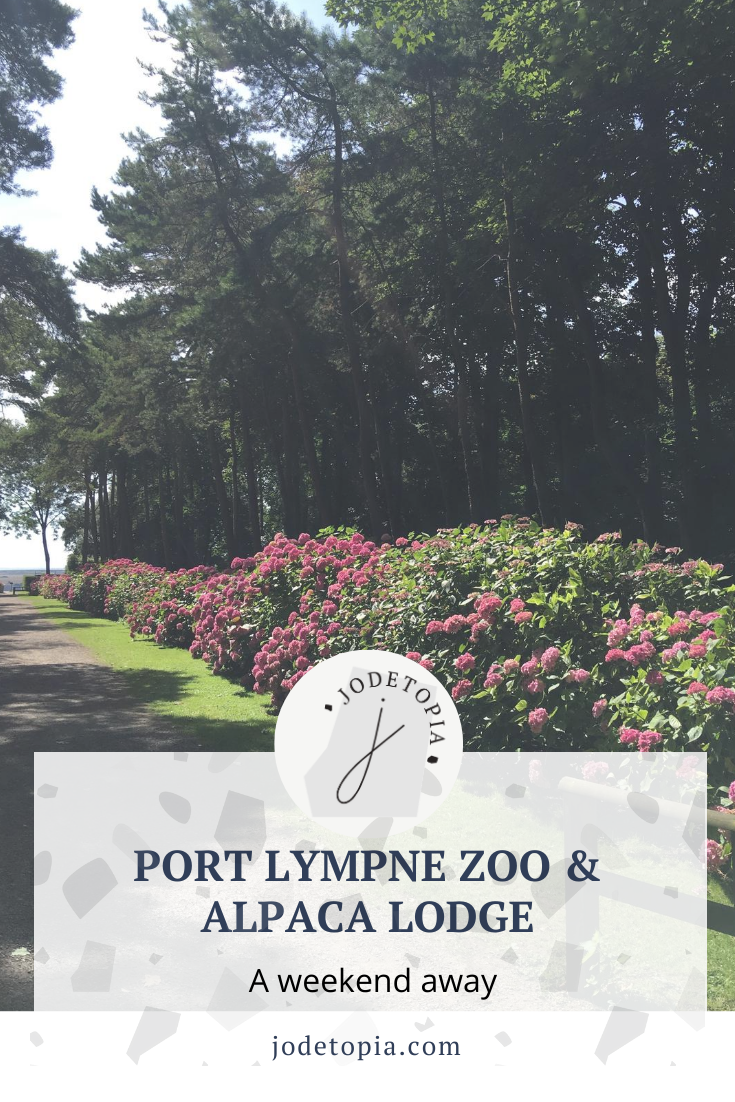 Port Lympne Zoo Pinterest Graphic