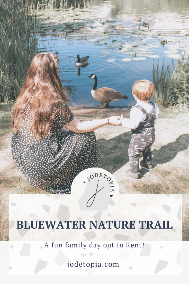 Bluewater Nature Trail Pinterest Graphic