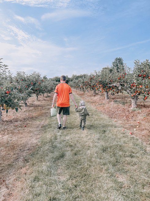 A man and his toddler apple picking in Kent